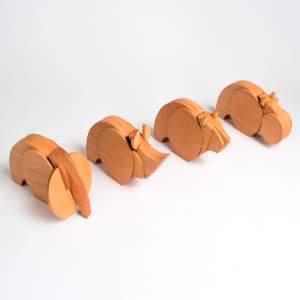 Nanodontes
